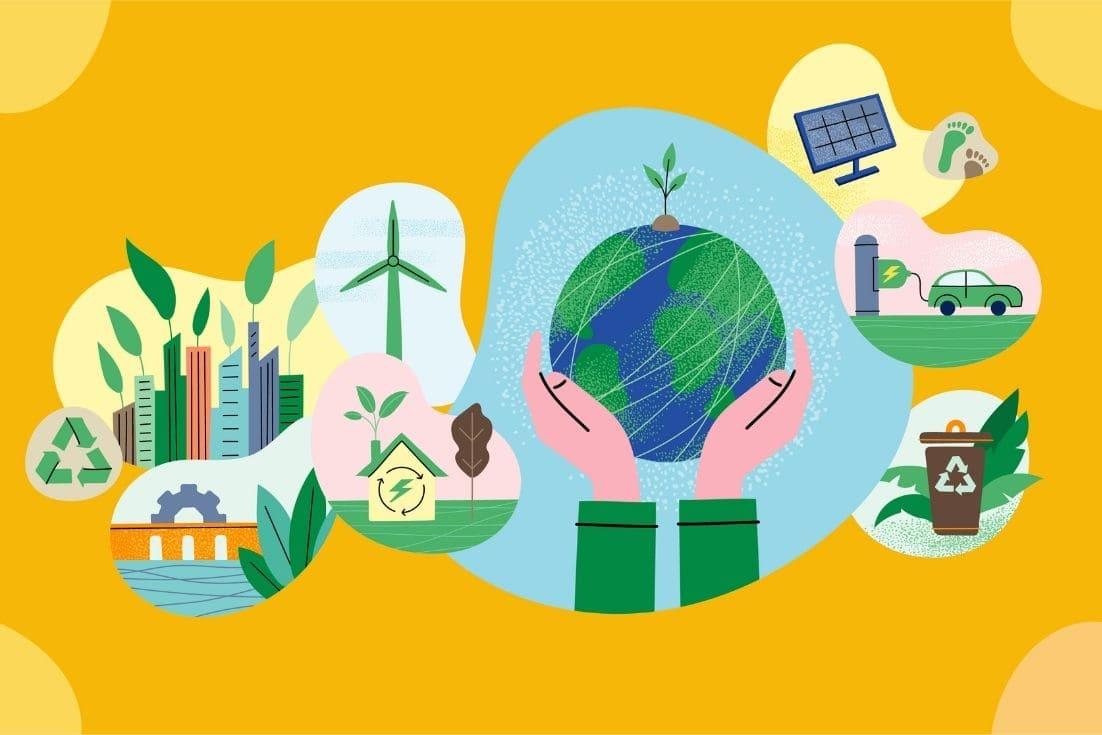 sustentabilidade que compensa